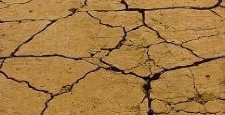 محافظة واسط تحذر من تعرض ناحية البشائر للجفاف بسبب اخطاء في تصميم أحد المشاريع الاروائية