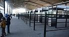 محافظ واسط: الداخلية تقرر إغلاق منفذ زرباطية لحين ترتيب آلية دخول الزائرين الإيرانيين