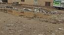 بالصور  .. المطر يغرق منطقة حي الجهاد في واسط