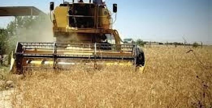 مزارعو الدبوني يطالبون باقالة جمال البطيخ وعضوا في مجلس المحافظة