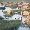 المواقع الاثرية العراقية وأهمية أدراجها في لائحة التراث العالمي